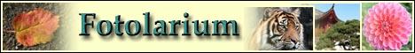 Fotolarium